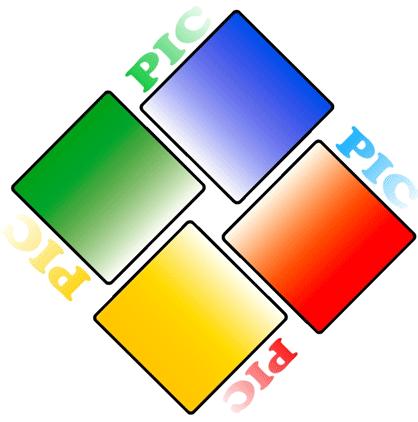Логотип НГО PIC